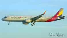 9226B_D-AVXR_A321_ASIANA-AIRLINES-B_resize